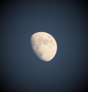 Moon Goddess pic 1