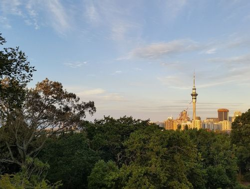Views of the CBD from my Ponsonby hostel room.