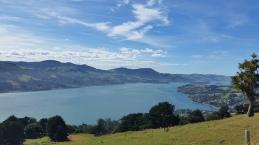 Views on the peninsular